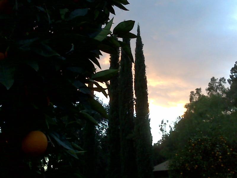 An Ojai sunset from the BackYard...